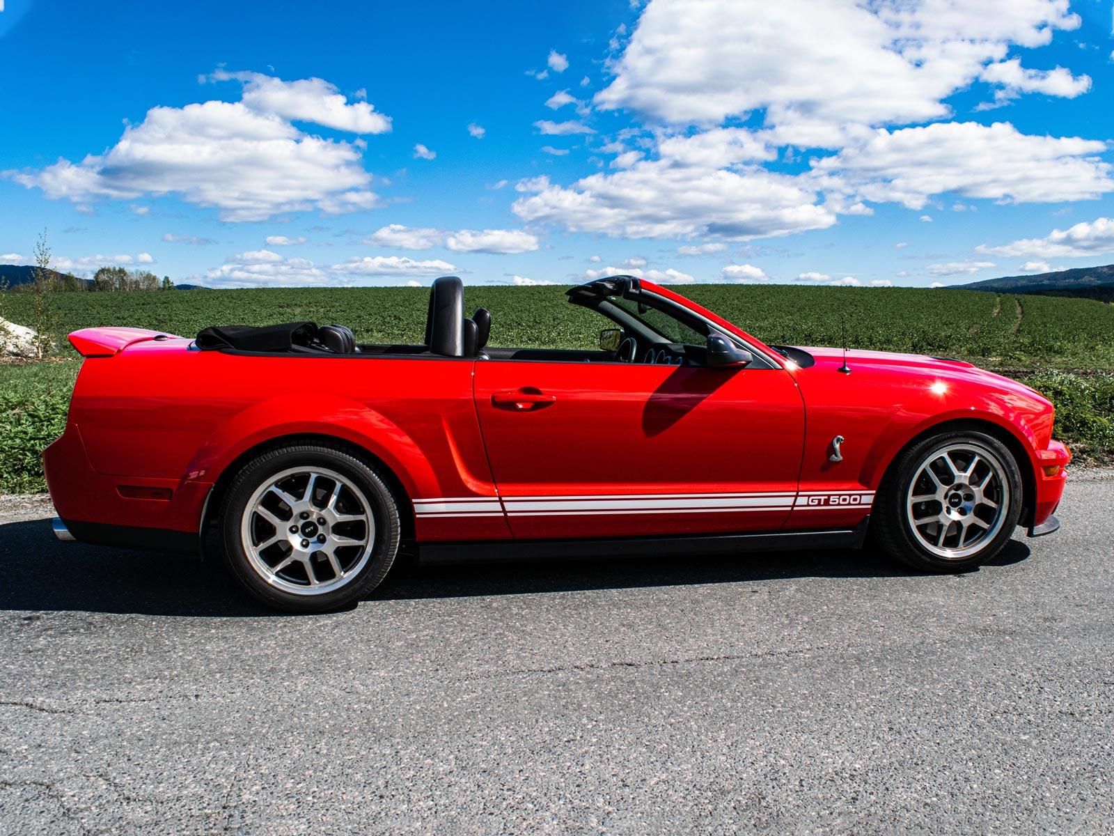 Ford Mustang Shelby. Se vårt utvalg av biler
