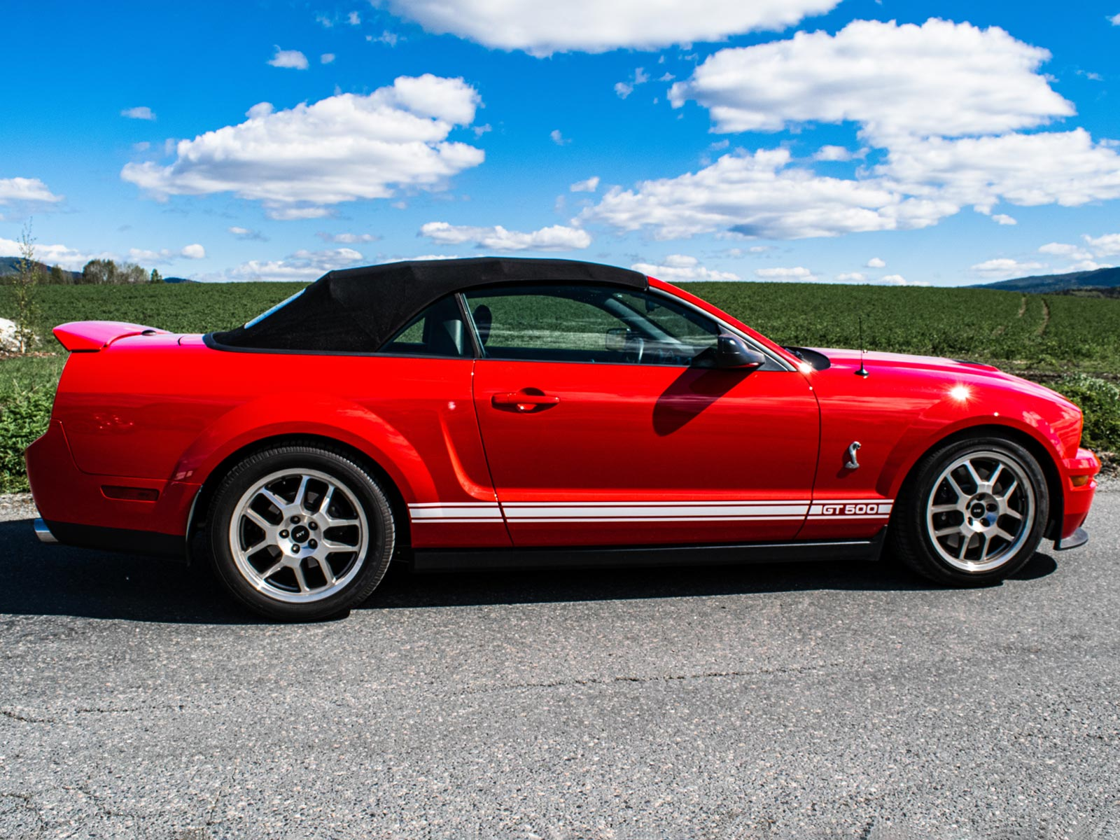 Ford Mustang Shelby.